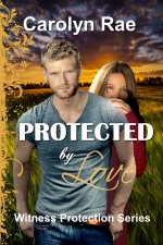 Cover-orders-2-001-Page-4 Protected
